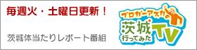 top_asuka